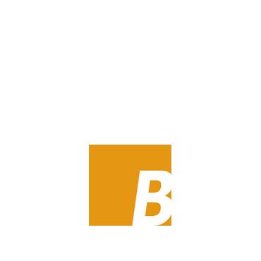Bogholderiet.NET