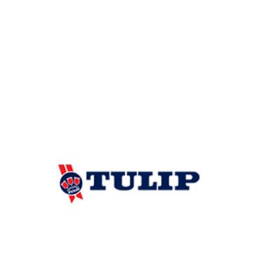 Tulip Food Company
